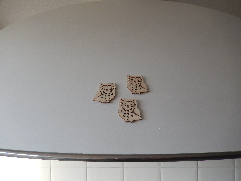 koelkast magneet houten uiltjes